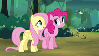 Fluttershy 'He says hello' S4E18