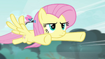 Fluttershy flying back to the cottage S4E16