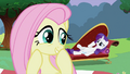 Fluttershy giggling S2E03.png
