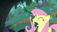Fluttershy picking a leafy vine S8E18