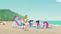 Mane Six and Spike hang out on the beach EGFF.png