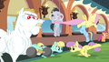 Ponyville teams training S4E24.png