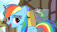 Rainbow Dash 'Hi, Pinkie Pie' S1E25
