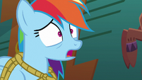Rainbow Dash tries to speak S6E13