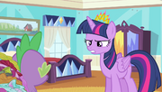 S04E24 Twilight zła na Spike'a