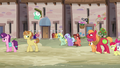 Sugar Belle and Feather walk away from Big Mac and CMCs S7E8.png
