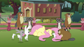 Animals surrounding a cowering Fluttershy S3E05.png
