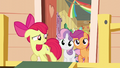 Apple Bloom banished from the clubhouse S5E4.png