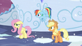 Fluttershy, Rainbow, and Applejack heard Shining Armor S6E2.png