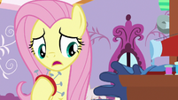 "Fluttershy ""you should let Spike know"" S9E19"