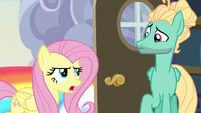 Fluttershy --you can't just fly in-- S6E11