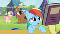 Fluttershy looking at Rainbow Dash S4E22.png