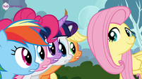 Fluttershy with her friends Twitter promotional