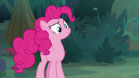 Pinkie Pie looking puzzled S8E13