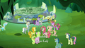 Ponies corner Twilight and Spike S5E26.png