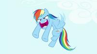 Rainbow 'He's a rock!' S4E18
