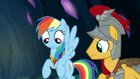 Rainbow Dash wearing the element of loyalty S7E26