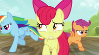 Rainbow and Scootaloo pass Apple Bloom S5E17