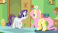 Rarity and Fluttershy are about to have a talk S1E20
