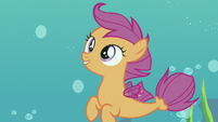 "Scootaloo ""with their sweet maneuvers"" S8E6"
