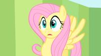 Shocked Fluttershy S1E20