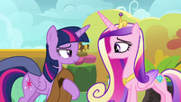 Star Tracker tapping on Twilight Sparkle S7E22
