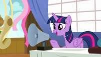 "Twilight Sparkle ""is everypony ready?"" S7E22"