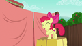 Apple Bloom excited to work with Applejack S6E14.png