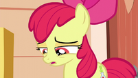 Apple Bloom feeling more rejected S5E4