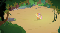 Applejack and Fluttershy in a dirt clearing S8E23