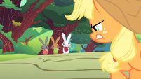 Applejack angry at varmints S1E23