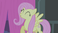 Fluttershy sing S4E14.png