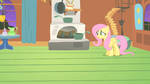 Fluttershy wonder why S1E17