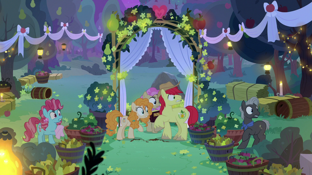 File:Mac, Butter, and wedding participants hear Granny Smith S7E13.png