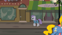 Maud Pie walking through Manehattan S6E3