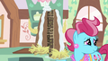 Mrs. Cake with a cake S5E11.png