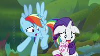 Rainbow Dash -his breath smells so bad- S8E17
