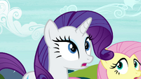 Rarity -are you all seeing what I'm seeing-- S4E26
