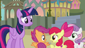 "Apple Bloom ""well, he did"" S8E6.png"