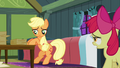Apple Bloom 'I was gonna ask you the same thing!' S3E08.png