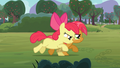 Apple Bloom and Babs seven-legged race S03E08.png