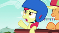 Apple Bloom sighing S6E14.png