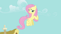 "Fluttershy ""I don't really know"" S4E04.png"
