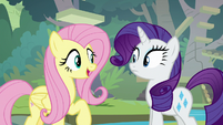 "Fluttershy ""do you need help knitting?"" S8E4"