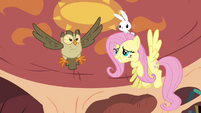 Fluttershy and Owlowiscious in the air S03E11