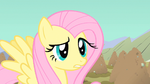 Fluttershy blocked all the holes S1E19