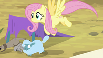 Fluttershy evacuating the animals S9E22