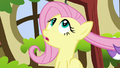 Fluttershy looking up S5E13.png