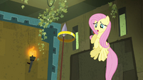 Fluttershy watching ring be caught S4E04