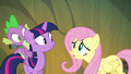 Fluttershy worried that they might lose the real Pinkie S3E03.png
